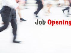 שוק העבודה 2016
