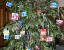 עץ מתנות